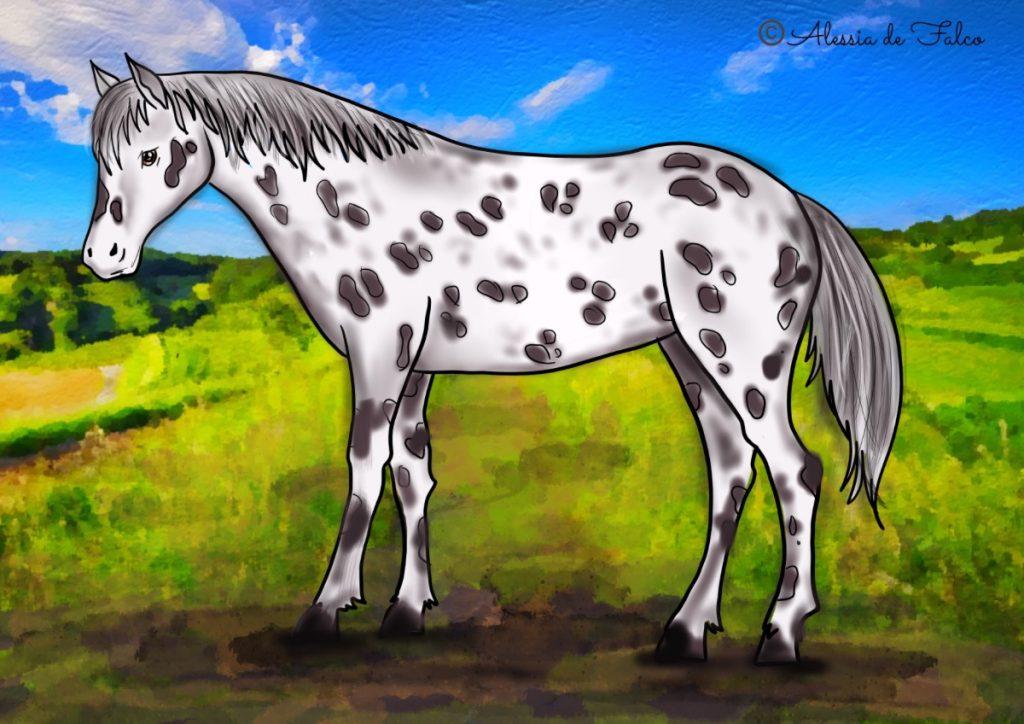 cavallo Appaloosa da colorare